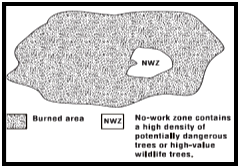 No work zone (NWZ) graphic showing a large circle shaded with a NWZ clear circle on right side within shaded area indicating the potentially dangerous tree or high-value wildfire area.