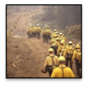 6mfs-tdih-veterans-day-fire-fighters.png