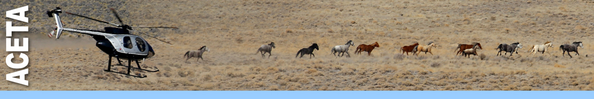 ACETA header graphic. Image of helicopter flying over band of wild horses on open range. Decorative.