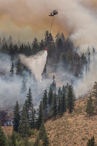 photo of a helicopter dropping water from a bucket over tall forest trees, smoldering with flames and heavy smoke. Decorative.
