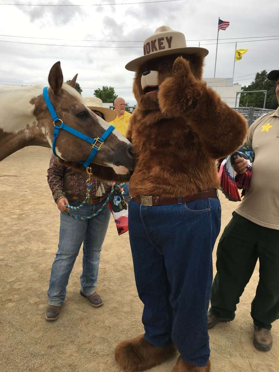 Smokey Bear with pack horse