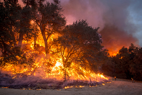 Photo of a fire rages on a hillside where firefighters have set a backfire. Decorative.