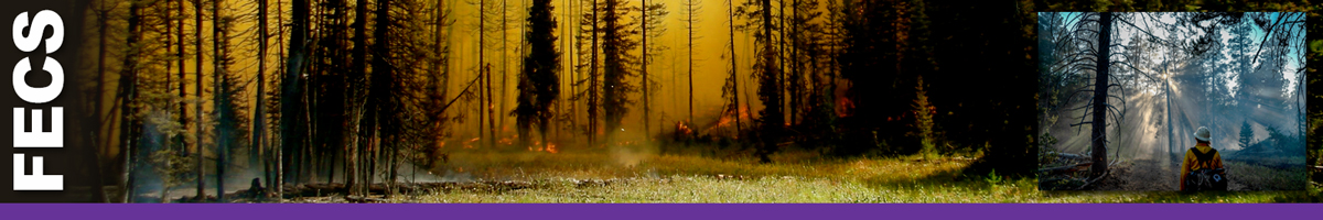 FECS header graphic. Smokey forest with smoldering ground and flames with inset of a wildland firefighter looking into smoking timber area. Decorative.