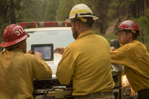 Photo of a three wildland firefighters reviewing maps on a digital tablet. Decorative