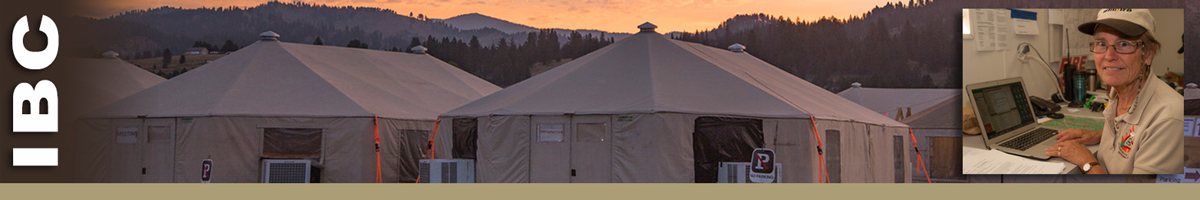 IBC banner with background of tents and inset photo of team member at laptop. Decorative banner.