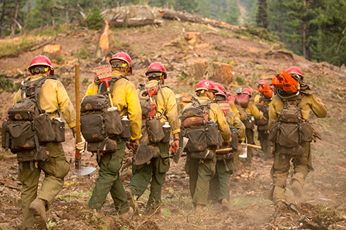 Photo of a line of wildland firefighters walking away, single file, down a path.