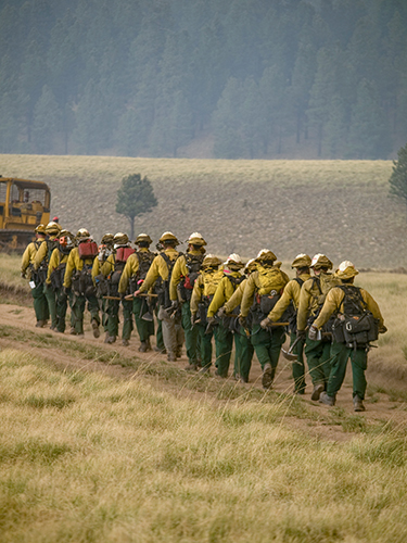Line of wildland firefighters marching single file, wearing backpacks and carrying tools. Decorative.