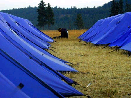 Photo of tents in a field. Decorative