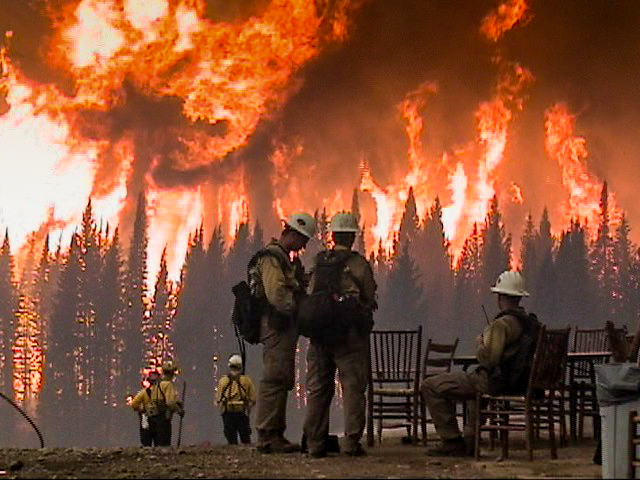 photo of firefighters with forest burning in the background. Decorative.