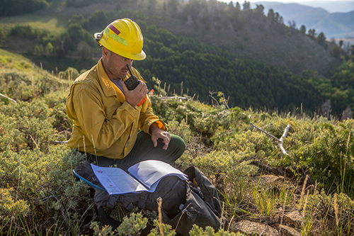 Photo of firefighter talking on radio in a clearing. Decorative.
