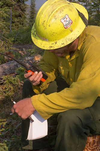 A wildland firefighter holds a hand radio to call in data gathered in the field. Decorative.
