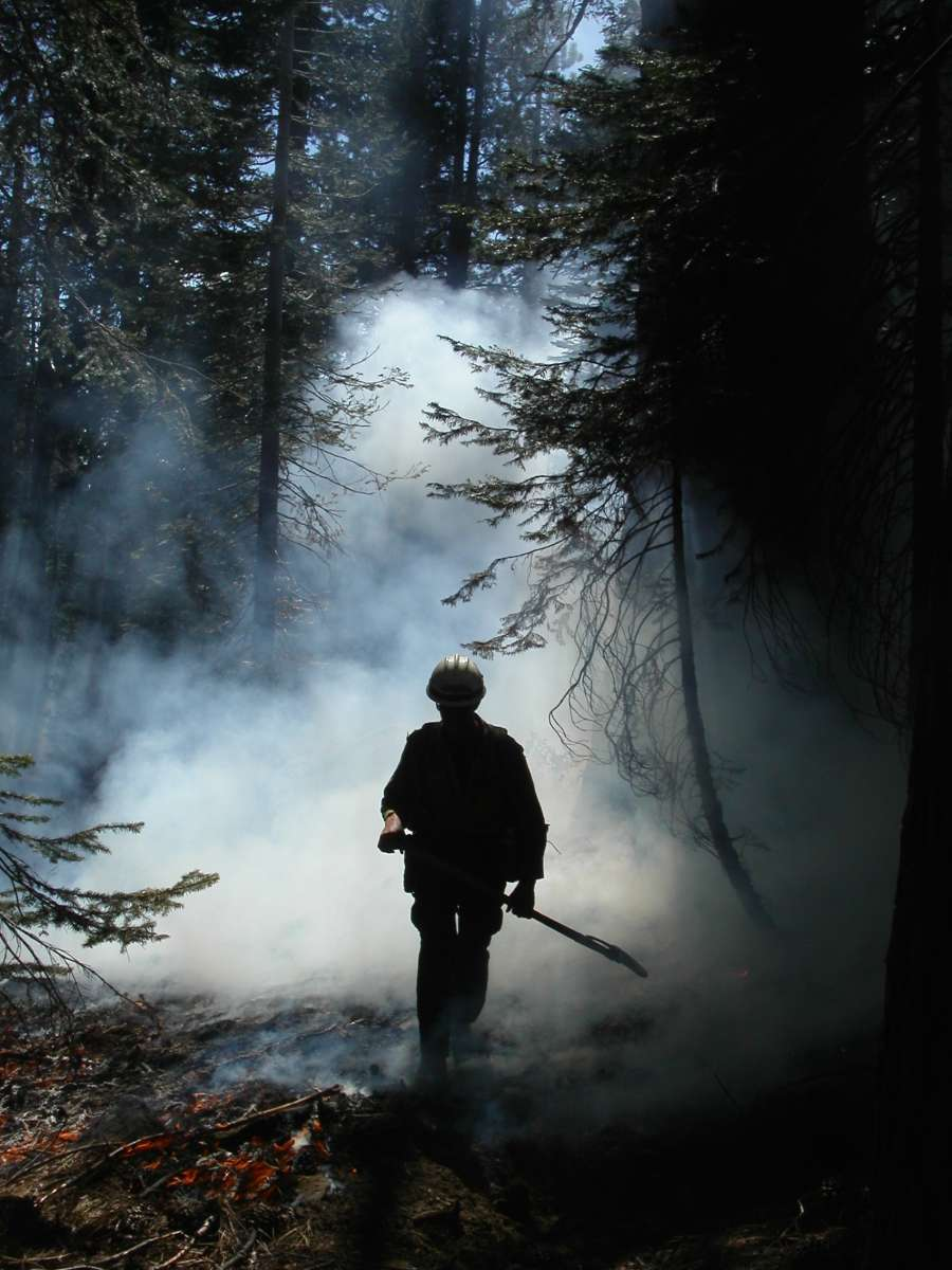 photo of firefighter walking through smoking woods
