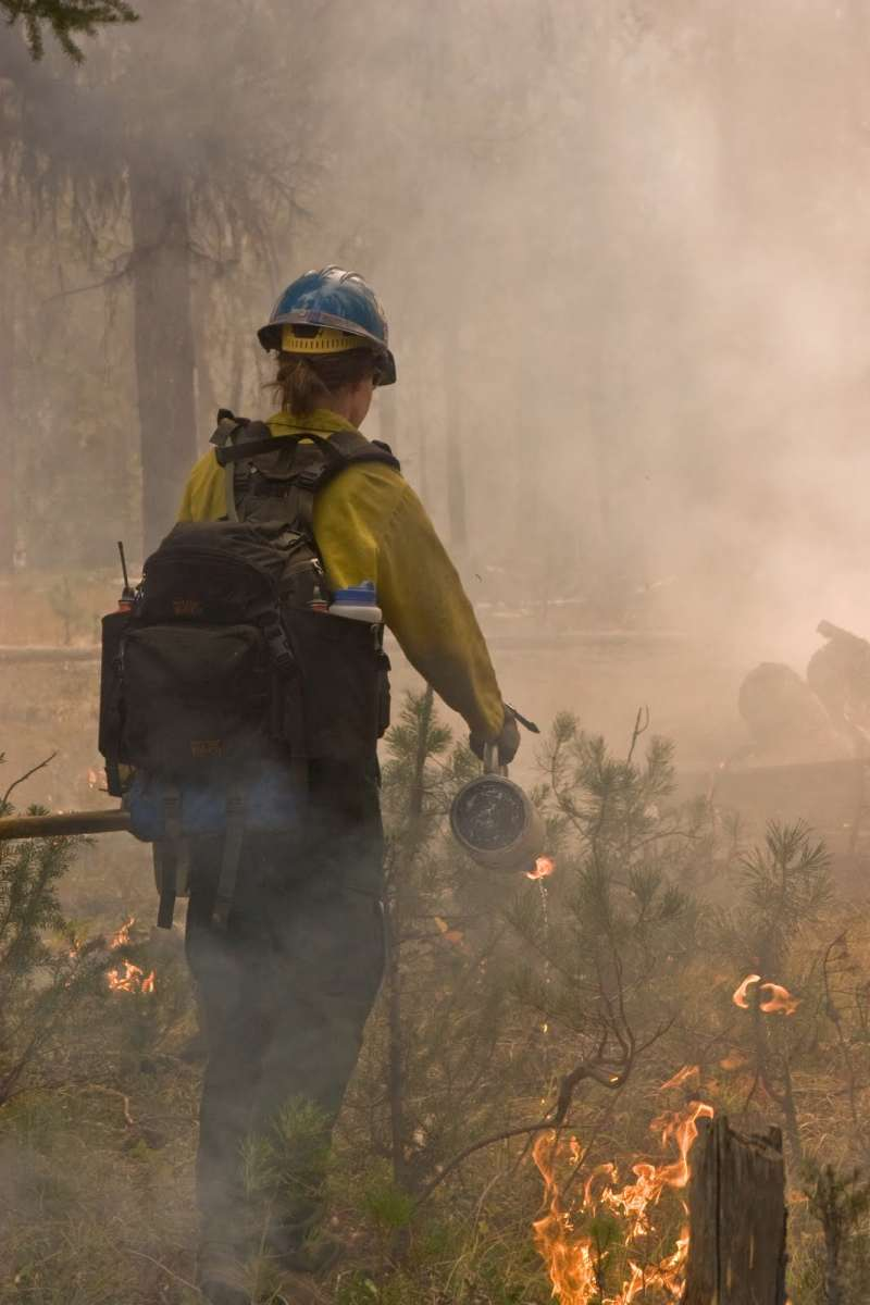 photo of wildland firefighter with drip torch