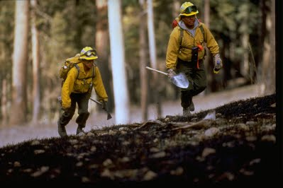 picture of 2 firefighters climbing a hill with gear