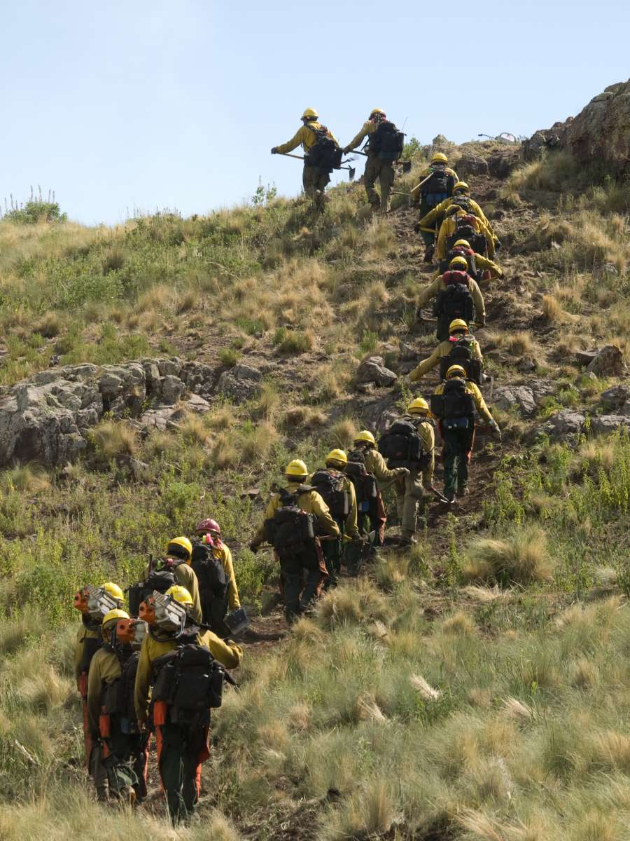 Firefighters walking up a hill with tools. Decorative.