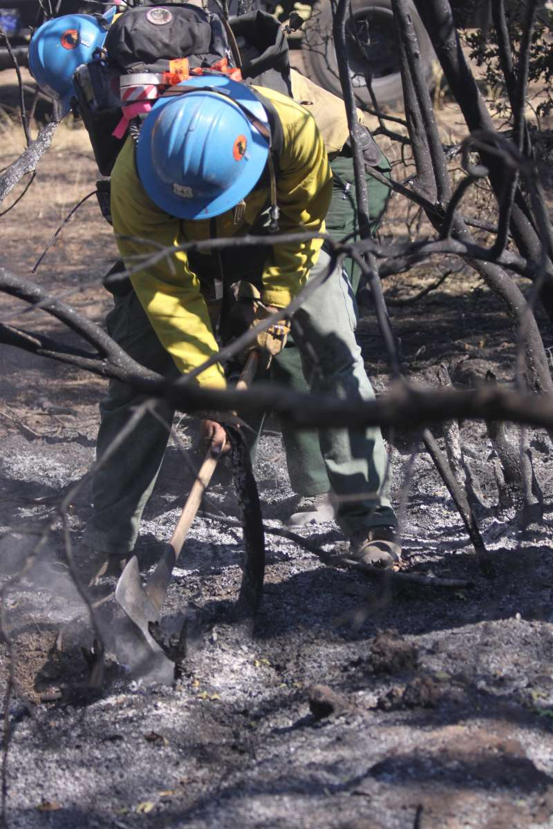 photo of firefighter digging fireline with a pulaski