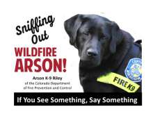 Sniffing Out Wildland Arson with Arson K-9 Riley, a black Lab.