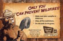 Smokey on rustic background, only you can prevent wildfires, fire prevention tips