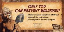 Smokey Bear, only you can prevent wildfires, make sure your campfire is dead out, obey fire restrictions, do not park or drive on dry grass