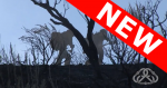 Silhouette of two firefighters walking up a hill beyond burned brush.