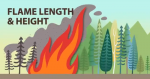 Cartoon image of a flame in the foreground of trees depicting flame length and height.