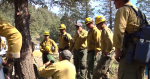 Photo of firefighters gathered around a tree learning about tree hazards.