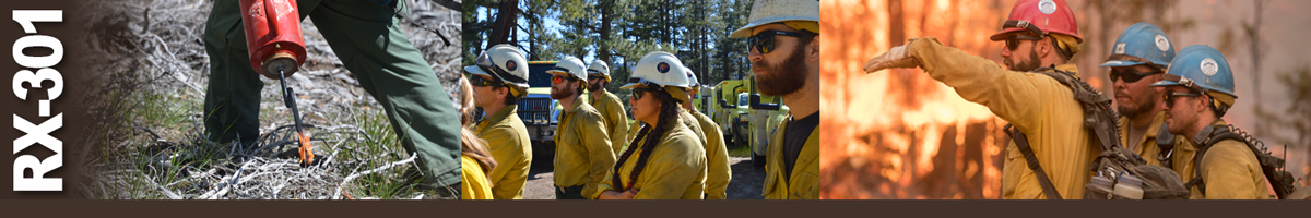 Decorative banner: Three photos of wildland fire burn operations. Firefighter walking along with drip torch igniting grasses, group of seven plus firefighters listening to instructions, two firefighters listen to crew boss while fire burns in background.