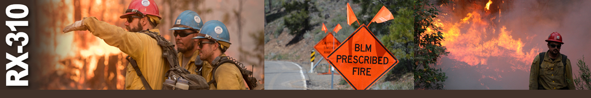 Decorative banner: Three photos of wildland fire operations. Two firefighters listen to lead firefighter. A traffic sign with flags on top warns of BLM Prescribed Fire area. Firefighter walking away from burning brush and trees.