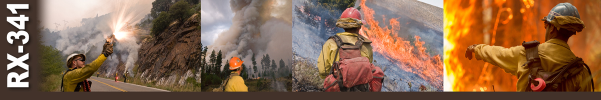 RX-341 Decorative banner. Group of photos depicting wildland firefighters performing various duties.