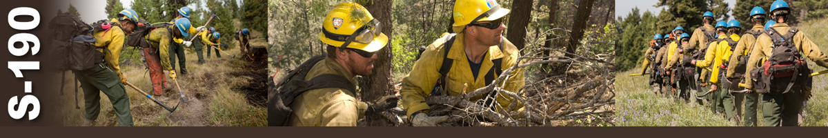S-190 Introduction to Wildland Fire Behavior, 2008 | NWCG