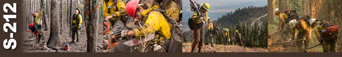 Decorative banner: Four photos showing wildland firefighters performing duties. Two firefighters assess a tree for felling. A firefighter sits on ground working on his chainsaw in his lap. Four firefighters climb a steep hill carrying chainsaws and equipment. Three firefighters digging a line with hand tools.