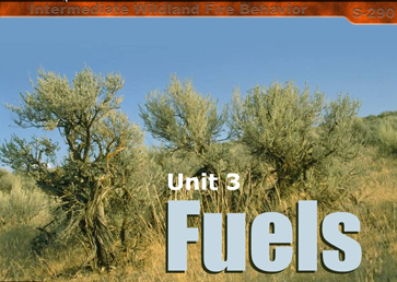 Slide 1 of Unit 3 for S-290 Intermediate Wildland Fire Behavior