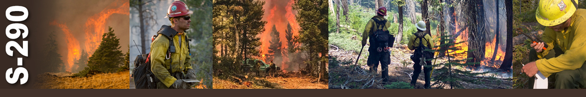 Decorative banner: Five photos showing various wildland fire scenes. Extreme fire behavior in a stand of pine trees, a division supervisor looking east, two firefighters stand in front of truck while forest fire fills the scene behind them, two firefighters observe a fire working its way through the forest, and a wildland firefighter sits using a handheld radio to provide information.