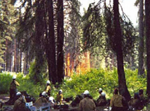 Entiat Hotshot Crew at the Lunch Spot after returning to the fire at approximately 14:00 hours on July 10, 2001. Note fire behavior on east side of Chewuch River.