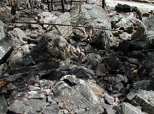 This rock scree slope above the road was the location where the four firefighter fatalities occurred. Two other firefighters who were initially in the rocks moved down toward the road and river during the entrapment. Note the variable size of the rocks and the impact this could have on ability to move and ability to get into a fire shelter.